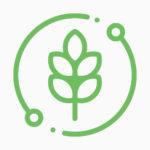 biogreenmark-icon-WheatBran